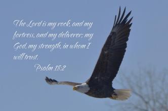 psalm18.2